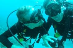 Selfie subacuática